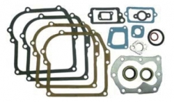 Gasket set with seals, fits 4hp vertical, 16pcs
